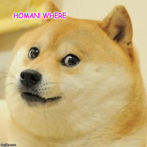 HOMAN! WHERE | image tagged in memes,doge | made w/ Imgflip meme maker