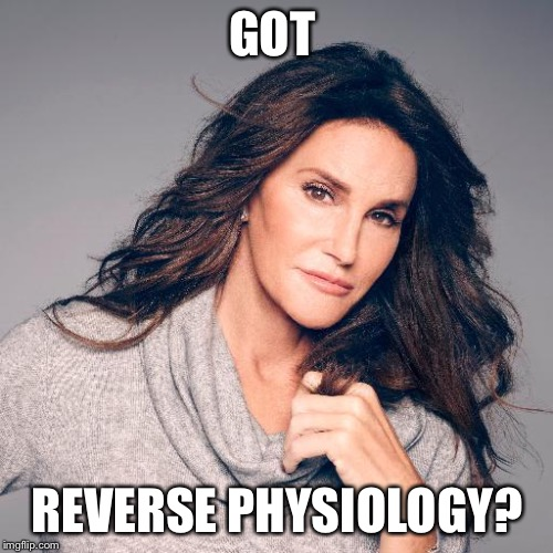 Caitlyn Jenner Photo | GOT REVERSE PHYSIOLOGY? | image tagged in caitlyn jenner photo | made w/ Imgflip meme maker