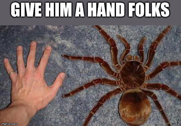 BIG spiders | GIVE HIM A HAND FOLKS | image tagged in big spiders | made w/ Imgflip meme maker