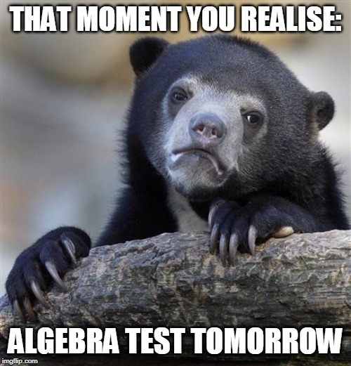 Confession Bear | THAT MOMENT YOU REALISE: ALGEBRA TEST TOMORROW | image tagged in memes,confession bear | made w/ Imgflip meme maker