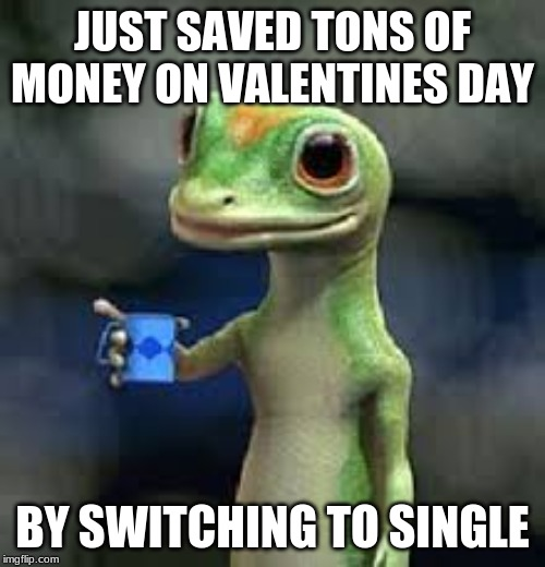 Geico u save a lot of money |  JUST SAVED TONS OF MONEY ON VALENTINES DAY; BY SWITCHING TO SINGLE | image tagged in memes,geico | made w/ Imgflip meme maker