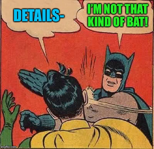 Batman Slapping Robin Meme | DETAILS- I'M NOT THAT KIND OF BAT! | image tagged in memes,batman slapping robin | made w/ Imgflip meme maker