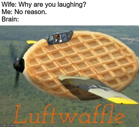 Luftwaffle | Wife: Why are you laughing? Me: No reason. Brain: | image tagged in humor | made w/ Imgflip meme maker