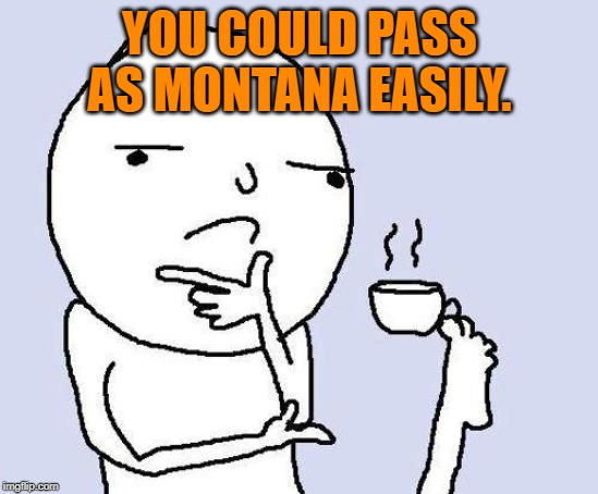 thinking meme | YOU COULD PASS AS MONTANA EASILY. | image tagged in thinking meme | made w/ Imgflip meme maker