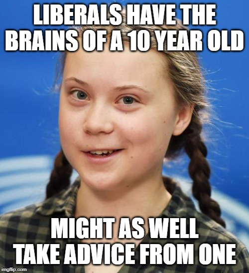 Greta Thunberg | LIBERALS HAVE THE BRAINS OF A 10 YEAR OLD MIGHT AS WELL TAKE ADVICE FROM ONE | image tagged in greta thunberg | made w/ Imgflip meme maker