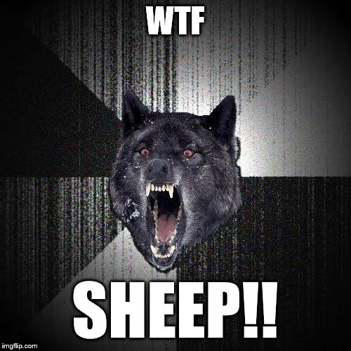Insanity Wolf Meme | WTF SHEEP!! | image tagged in memes,insanity wolf | made w/ Imgflip meme maker