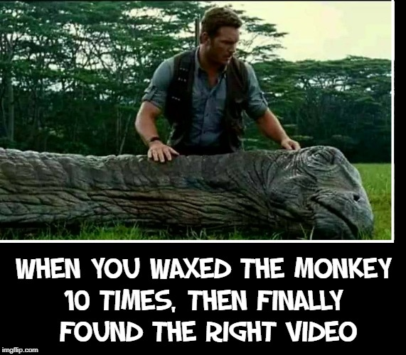 C'mon, Dino, wake up... |  WHEN YOU WAXED THE MONKEY 10 TIMES, THEN FINALLY      FOUND THE RIGHT VIDEO | image tagged in vince vance,brontosaurus,sleeping dinosaur,jurrasic park,grooming the wookie,jerking off | made w/ Imgflip meme maker