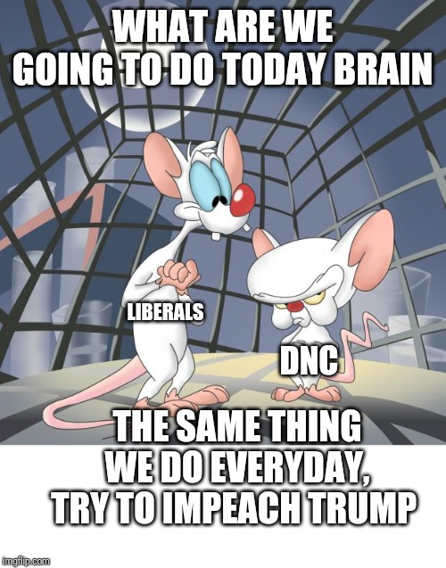 Pinky and the brain | WHAT ARE WE GOING TO DO TODAY BRAIN THE SAME THING WE DO EVERYDAY, TRY TO IMPEACH TRUMP LIBERALS DNC | image tagged in pinky and the brain | made w/ Imgflip meme maker