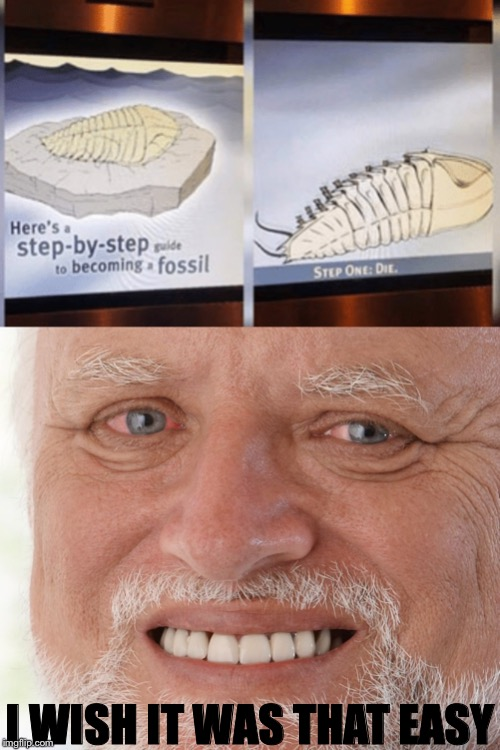 I WISH IT WAS THAT EASY | image tagged in hide the pain harold | made w/ Imgflip meme maker