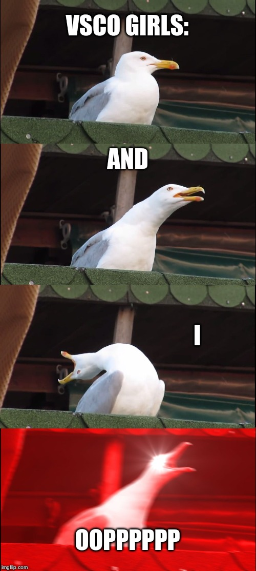 Inhaling Seagull Meme | VSCO GIRLS: AND I OOPPPPPP | image tagged in memes,inhaling seagull | made w/ Imgflip meme maker