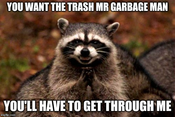 Evil Plotting Raccoon | YOU WANT THE TRASH MR GARBAGE MAN YOU'LL HAVE TO GET THROUGH ME | image tagged in memes,evil plotting raccoon | made w/ Imgflip meme maker