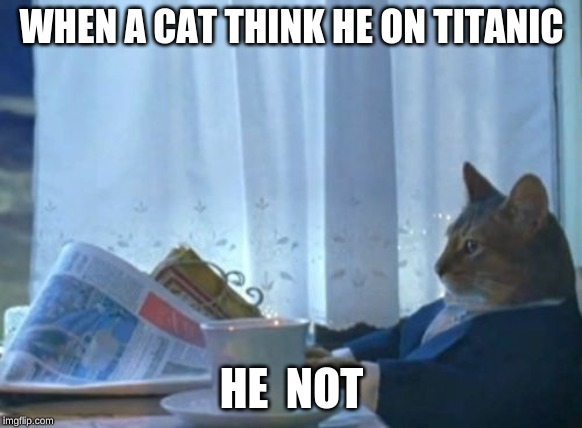 titanic 2.0 | WHEN A CAT THINK HE ON TITANIC HE  NOT | image tagged in memes,i should buy a boat cat | made w/ Imgflip meme maker
