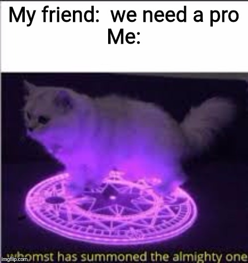 Whomst has Summoned the almighty one |  My friend:  we need a pro Me: | image tagged in whomst has summoned the almighty one | made w/ Imgflip meme maker