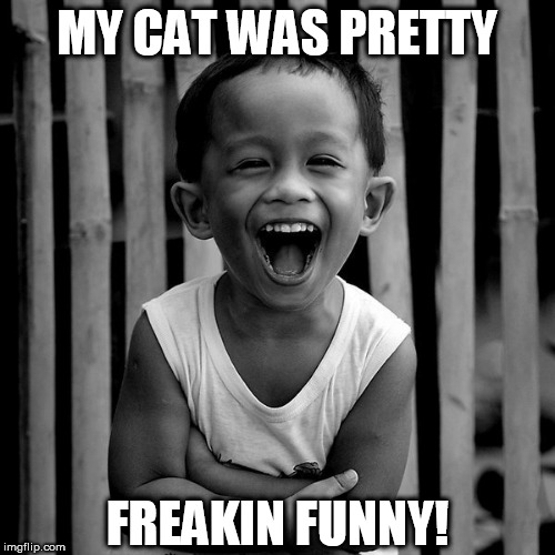 HILARIOUS CAT! | MY CAT WAS PRETTY FREAKIN FUNNY! | image tagged in funny,kitty | made w/ Imgflip meme maker