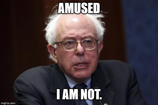Bernie Sanders | AMUSED I AM NOT. | image tagged in bernie sanders | made w/ Imgflip meme maker