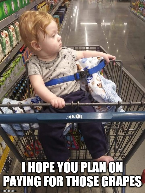 Cart baby | I HOPE YOU PLAN ON PAYING FOR THOSE GRAPES | image tagged in cart baby,grapes,funny baby,funny,grocery store,judgemental | made w/ Imgflip meme maker