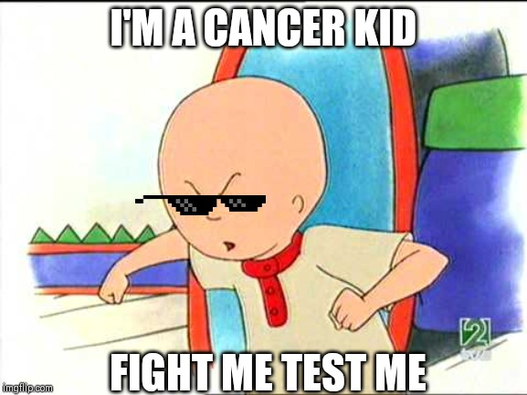 Angry caillou | I'M A CANCER KID FIGHT ME TEST ME | image tagged in angry caillou | made w/ Imgflip meme maker