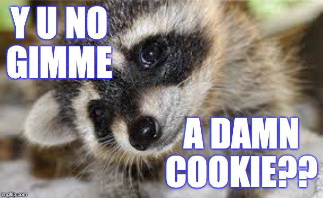 Y U NO GIMME A DAMN COOKIE?? | made w/ Imgflip meme maker
