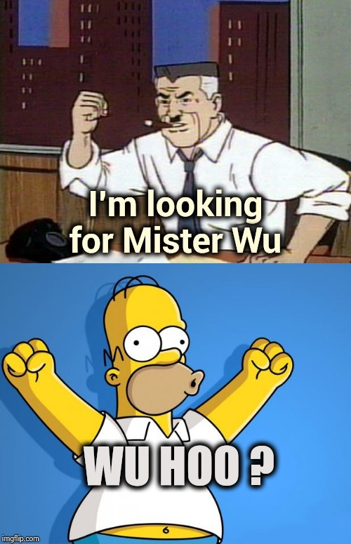 In the Cartoon world anything is possible | I'm looking for Mister Wu WU HOO ? | image tagged in woohoo homer simpson,jj jameson cartoon,dumb joke,not funny,sad cartoon | made w/ Imgflip meme maker
