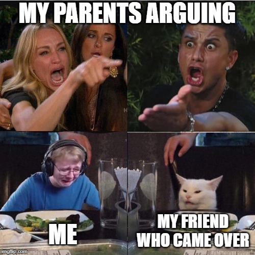 Four panel Taylor Armstrong Pauly D CallmeCarson Cat | MY PARENTS ARGUING ME MY FRIEND WHO CAME OVER | image tagged in four panel taylor armstrong pauly d callmecarson cat | made w/ Imgflip meme maker