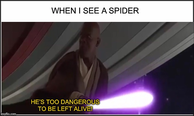 WHEN I SEE A SPIDER; HE'S TOO DANGEROUS TO BE LEFT ALIVE! | image tagged in blank white template,mace windu,star wars,palpatine,spider | made w/ Imgflip meme maker