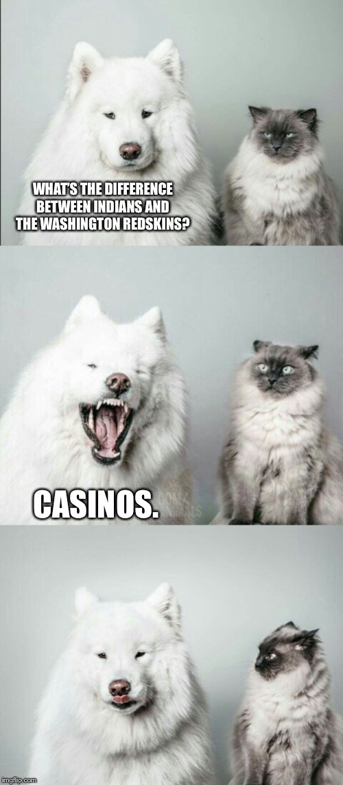 Indians vs. Redskins | WHAT'S THE DIFFERENCE BETWEEN INDIANS AND THE WASHINGTON REDSKINS? CASINOS. | image tagged in bad joke dog cat,memes,washington redskins,indian,money,nfl football | made w/ Imgflip meme maker