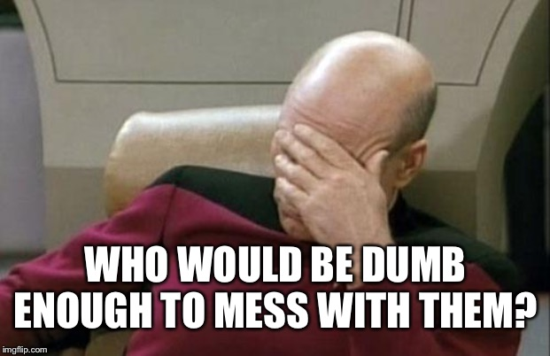 Captain Picard Facepalm Meme | WHO WOULD BE DUMB ENOUGH TO MESS WITH THEM? | image tagged in memes,captain picard facepalm | made w/ Imgflip meme maker