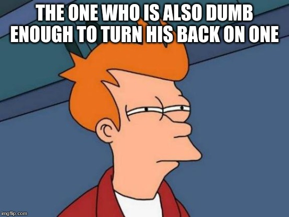 Futurama Fry Meme | THE ONE WHO IS ALSO DUMB ENOUGH TO TURN HIS BACK ON ONE | image tagged in memes,futurama fry | made w/ Imgflip meme maker