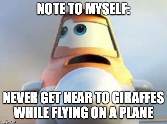 NOTE TO MYSELF: NEVER GET NEAR TO GIRAFFES WHILE FLYING ON A PLANE | made w/ Imgflip meme maker