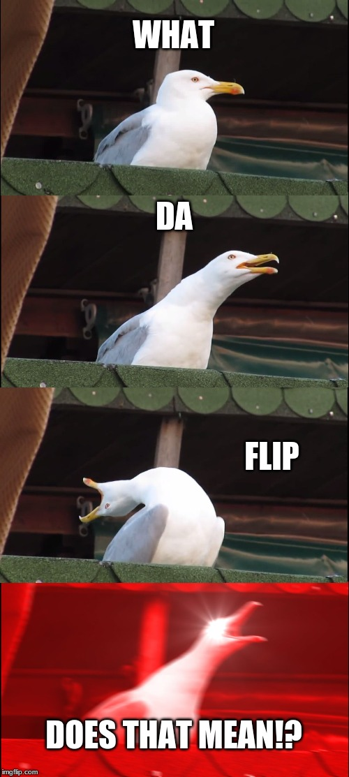 When someone says something confusing | WHAT DA FLIP DOES THAT MEAN!? | image tagged in memes,inhaling seagull,true | made w/ Imgflip meme maker