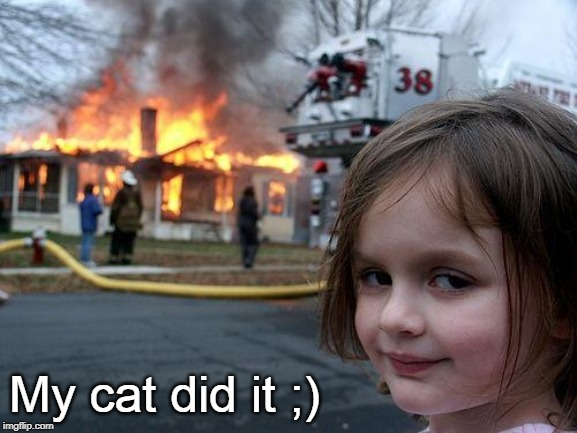 It wasn't me :) | My cat did it ;) | image tagged in memes,disaster girl,cat | made w/ Imgflip meme maker