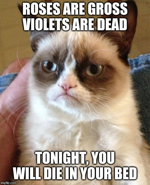 Grumpy Cat | ROSES ARE GROSS VIOLETS ARE DEAD TONIGHT, YOU WILL DIE IN YOUR BED | image tagged in memes,grumpy cat | made w/ Imgflip meme maker