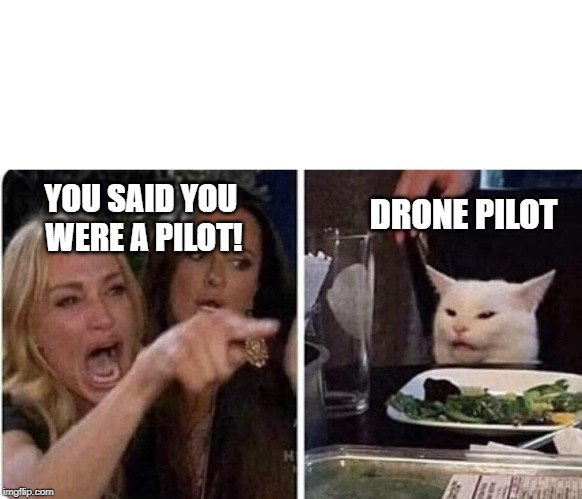 Angry Woman and Cat | YOU SAID YOU  WERE A PILOT! DRONE PILOT | image tagged in angry woman and cat | made w/ Imgflip meme maker