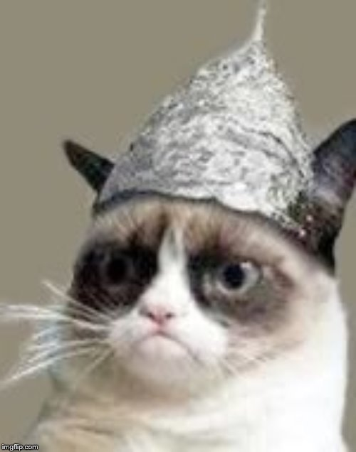 Paranoid Grumpy Cat | image tagged in paranoid grumpy cat | made w/ Imgflip meme maker