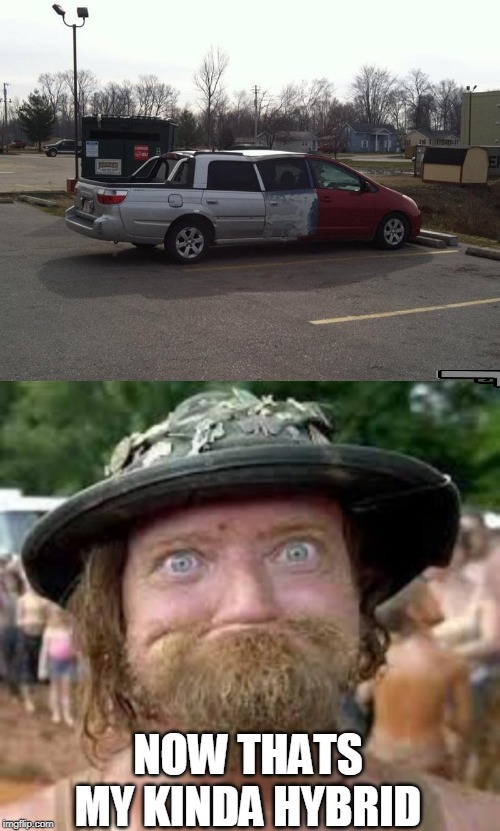 HILLBILLY HYBRID |  NOW THATS MY KINDA HYBRID | image tagged in hillbilly,hybrid,wtf | made w/ Imgflip meme maker