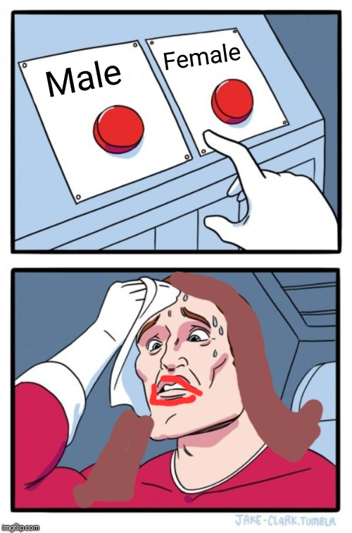 Two Buttons - Gender bias |  Female; Male | image tagged in memes,two buttons,transgender,trans,politically correct,politically incorrect | made w/ Imgflip meme maker