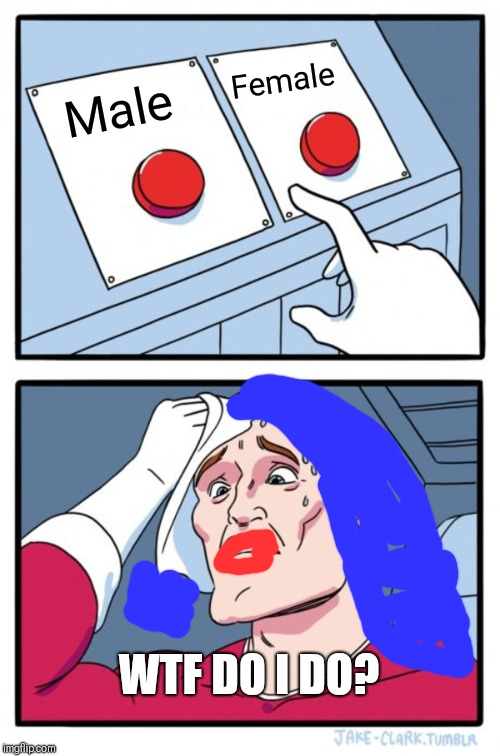 Two buttons is not enough! | Male Female WTF DO I DO? | image tagged in memes,two buttons,gender,transgender,transgender bathroom | made w/ Imgflip meme maker