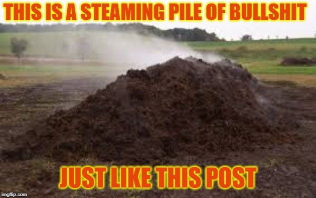 Steaming Pile | THIS IS A STEAMING PILE OF BULLSHIT JUST LIKE THIS POST | image tagged in pile of shit,steaming pile of shit,bullshit,steaming pile of bullshit,your post is bullshit | made w/ Imgflip meme maker
