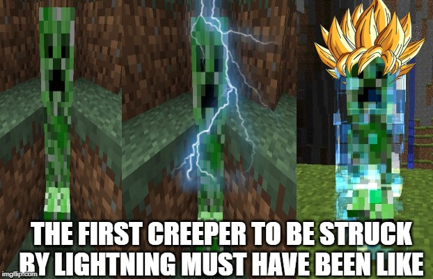 The first person to |  THE FIRST CREEPER TO BE STRUCK BY LIGHTNING MUST HAVE BEEN LIKE | image tagged in the first person to | made w/ Imgflip meme maker