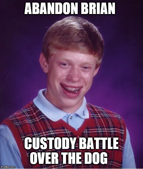 Bad Luck Brian Meme | ABANDON BRIAN CUSTODY BATTLE OVER THE DOG | image tagged in memes,bad luck brian | made w/ Imgflip meme maker