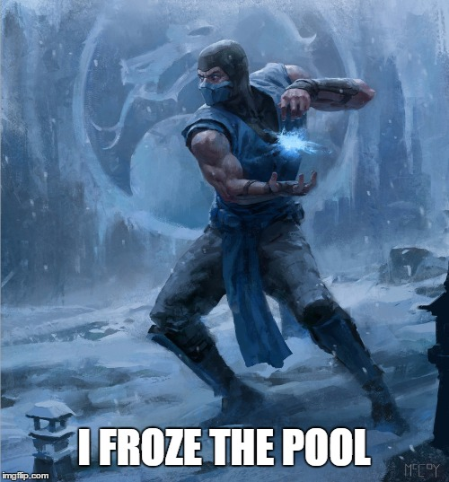 Sub Zero | I FROZE THE POOL | image tagged in sub zero | made w/ Imgflip meme maker