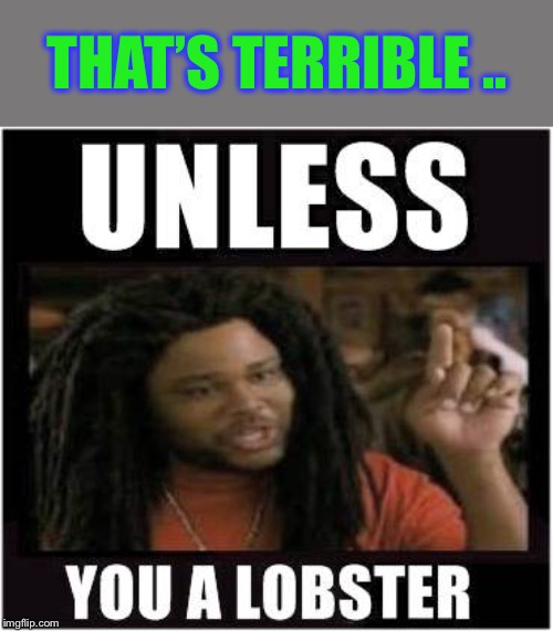 Lobster | THAT'S TERRIBLE .. | image tagged in lobster | made w/ Imgflip meme maker