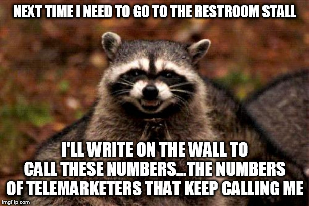 Evil Plotting Raccoon | NEXT TIME I NEED TO GO TO THE RESTROOM STALL I'LL WRITE ON THE WALL TO CALL THESE NUMBERS...THE NUMBERS OF TELEMARKETERS THAT KEEP CALLING M | image tagged in memes,evil plotting raccoon,payback,revenge,phone call | made w/ Imgflip meme maker