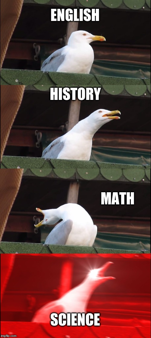 Inhaling Seagull Meme | ENGLISH HISTORY MATH SCIENCE | image tagged in memes,inhaling seagull | made w/ Imgflip meme maker