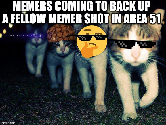 Wrong Neighboorhood Cats | MEMERS COMING TO BACK UP A FELLOW MEMER SHOT IN AREA 51 | image tagged in memes,wrong neighboorhood cats | made w/ Imgflip meme maker