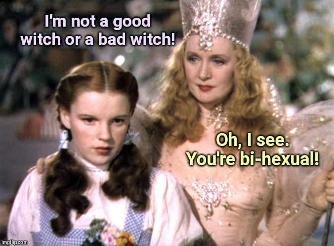 Dorothy comes out | I'm not a good witch or a bad witch! Oh, I see. You're bi-hexual! | image tagged in dorothy and glinda wizard of oz,witches,humor | made w/ Imgflip meme maker