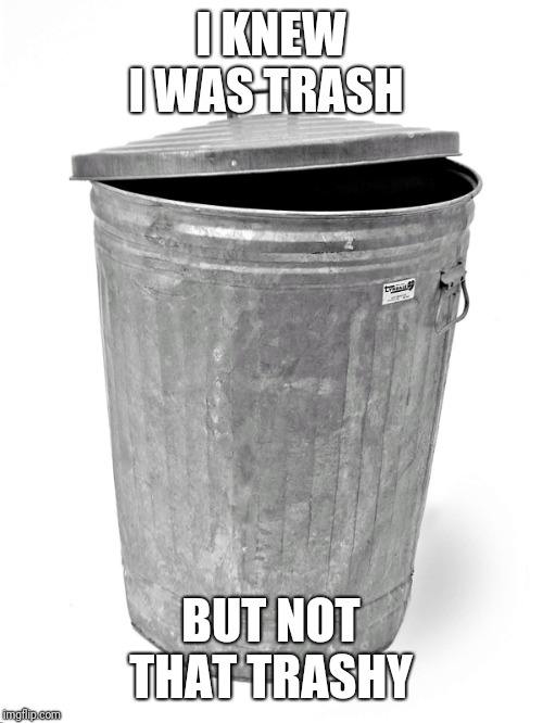 Trash Can | I KNEW I WAS TRASH BUT NOT THAT TRASHY | image tagged in trash can | made w/ Imgflip meme maker