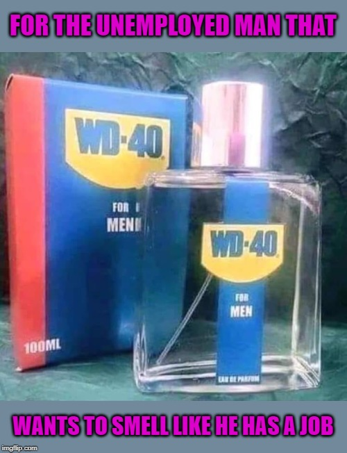 A must have for couch potatoes! | FOR THE UNEMPLOYED MAN THAT WANTS TO SMELL LIKE HE HAS A JOB | image tagged in wd 40 cologne,memes,gifts for dad,funny,wd 40,get a job | made w/ Imgflip meme maker