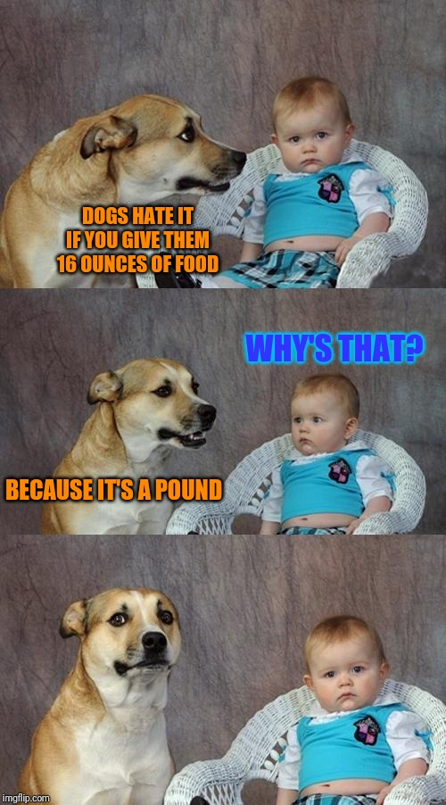 Dad Joke Dog Meme | DOGS HATE IT IF YOU GIVE THEM 16 OUNCES OF FOOD BECAUSE IT'S A POUND WHY'S THAT? | image tagged in memes,dad joke dog | made w/ Imgflip meme maker