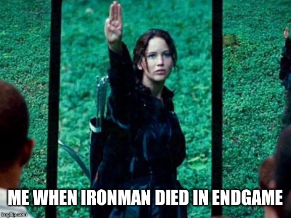 RIP Ironman (2008-2019) You will always be remembered | ME WHEN IRONMAN DIED IN ENDGAME | image tagged in hunger games 2,avengers endgame,iron man,tribute | made w/ Imgflip meme maker